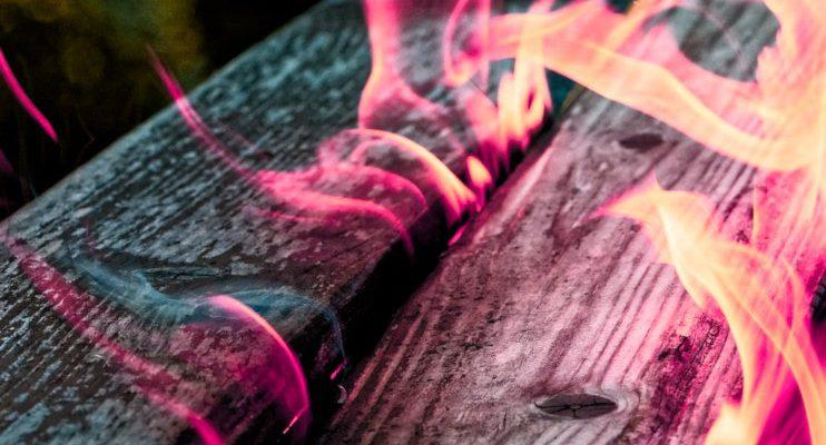Kadziło palo santo – czym jest? Właściwości